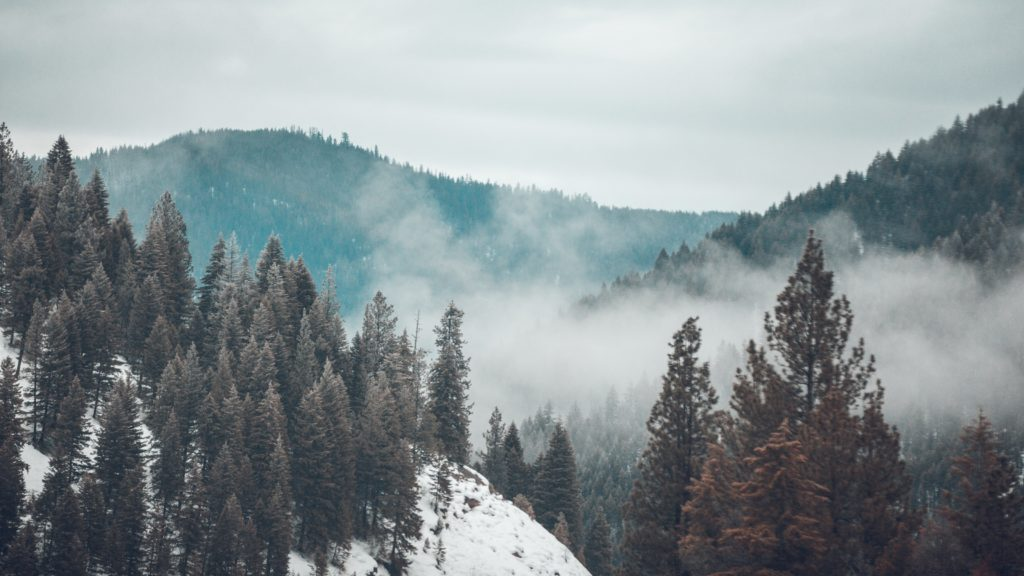 View of misty mountains, snow, and pine trees in Big Sky, Montana