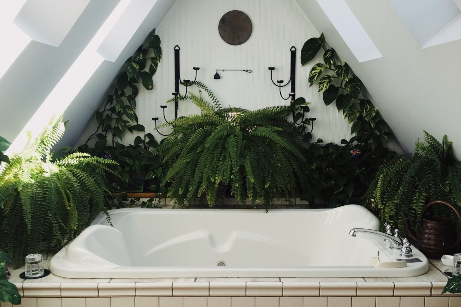 bath tub surrounded by green plants
