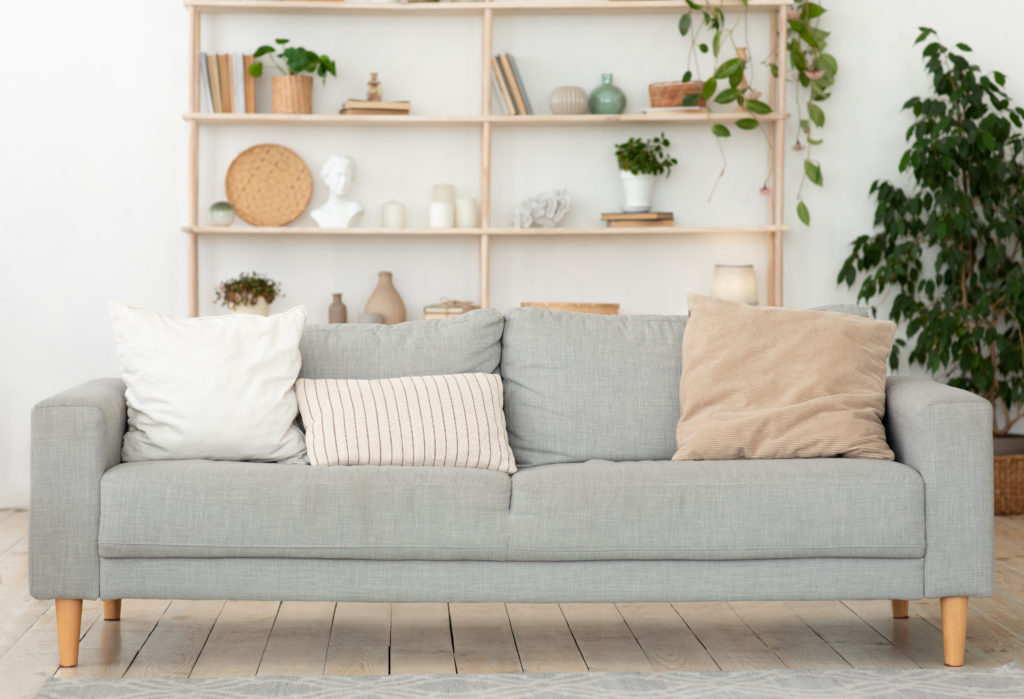 Cozy living room, modern furniture in apartment. Gray simple sofa with different pillows, next cupboard with accessories and herbs, on floor pot with green big plant at home with light walls, flat lay