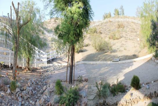 34136 Mcennery Canyon Rd | Photo 4