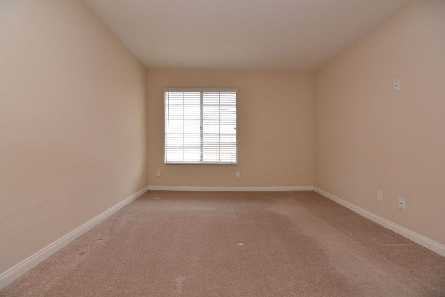 5540 Owensmouth Ave | Photo 16