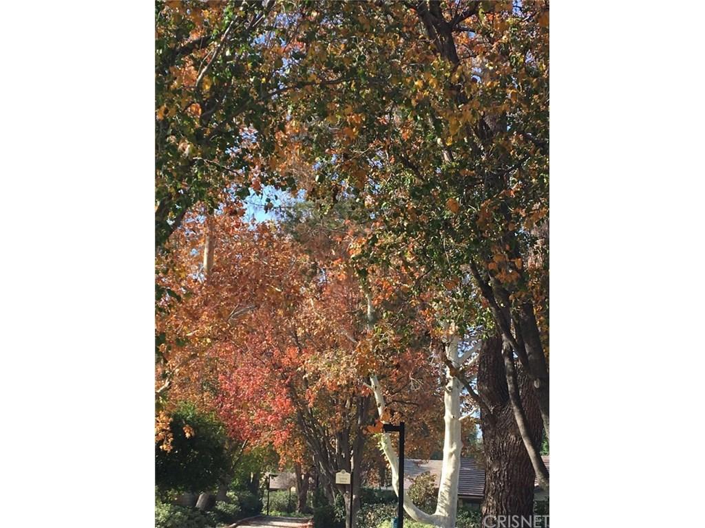 25638 Palma Alta Drive | Photo 7